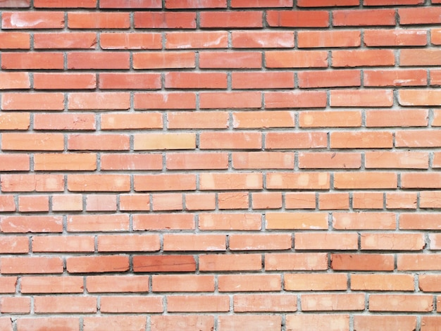 Background brick wall in a bright sunny day