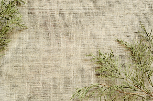 Background of canvas with branches