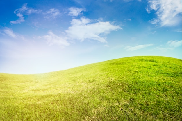 Background of curve grassland on blue sky with sunlight.