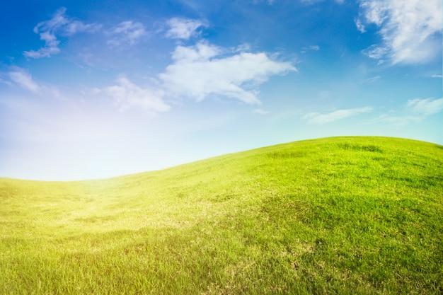 Background of curve grassland on blue sky with sunlight.