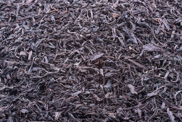 Background of dried tea leaves of dark color.