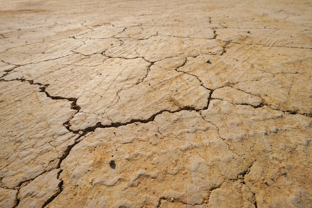 Background of dry cracked soil textured