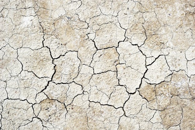 Background of dry soil texture