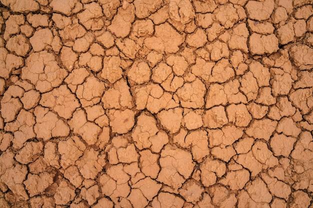 Background of dry soil with cracks utah usa