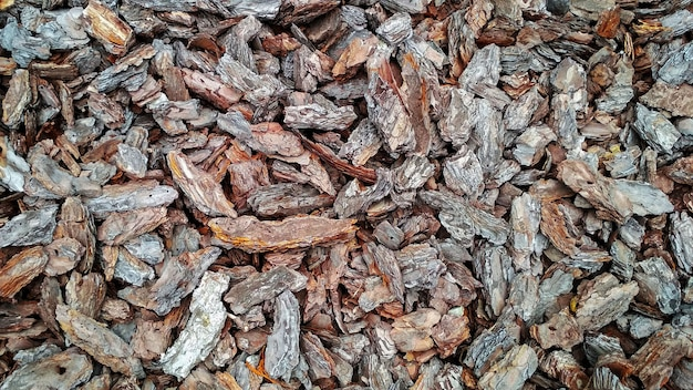 Background in the form of pieces of pine bark brown