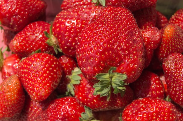 Background of fresh ripe strawberries