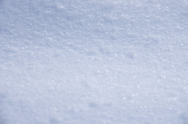 Background of fresh snow texture