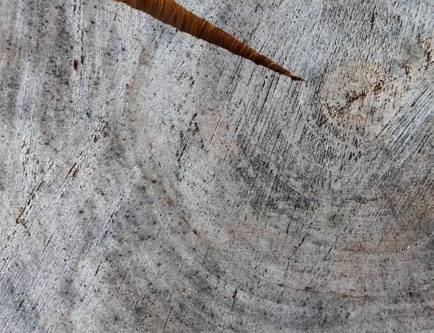 古い風化した木のリングから木の幹の抽象的なテクスチャの断面からの背景