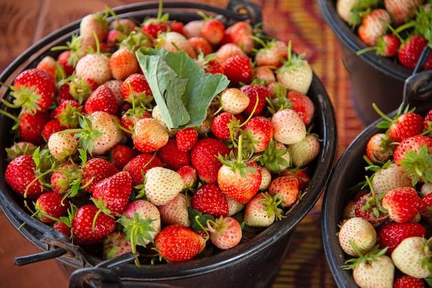Background from freshly harvested strawberries.