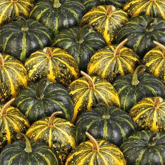 Фон из зеленых и оранжевых полосатых тыкв.