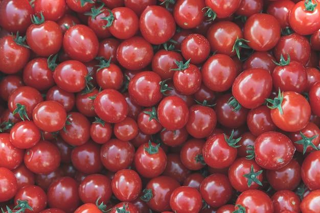 화학없이 자란 붉은 익은 토마토의 배경