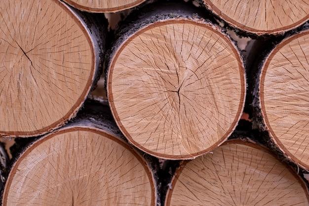 Фон из круглых березовых подушек текстуры древесины