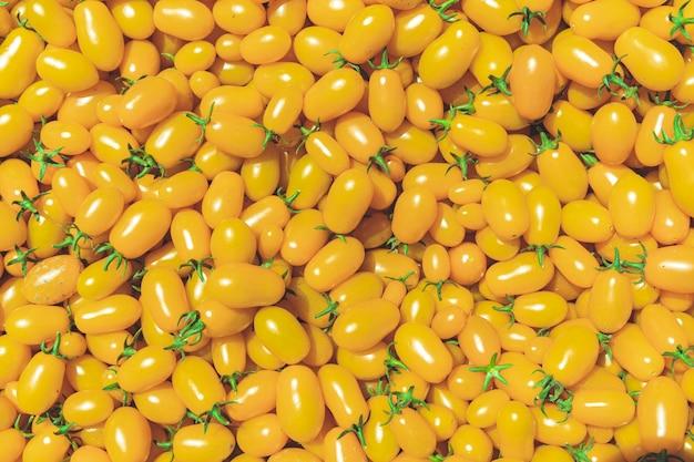 화학없이 자란 노란색 익은 토마토의 배경