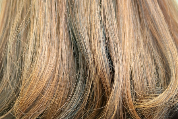 Background of hair dyed color with highlight technique