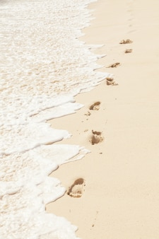Background of  human feet of human feet on the beach sand near the water, vertical composition