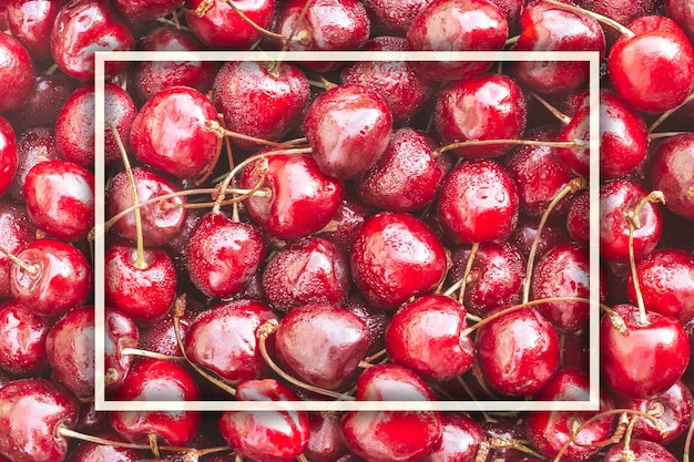 Background image of lying red ripe sweet cherries with white rectangular frame. top view, flat lay. copy space
