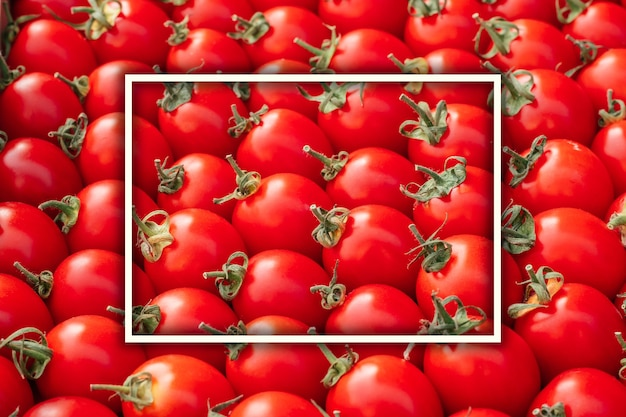 Background image of lying rows of red ripe cherry tomatoes with white rectangular frame. top view. flat lay, copy space