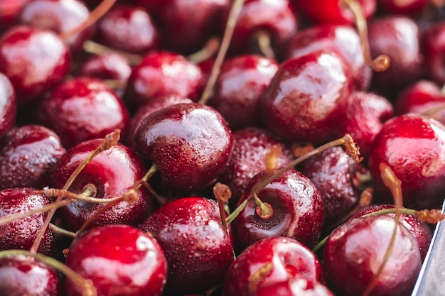 Background image of partially blurred lying red ripe sweet cherries, copy space