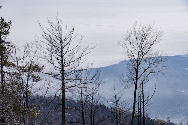 背景ロシア、イルクーツク州、カメンチェルスキー岩で4月に木々と山々とバイカル湖の風景ビュー