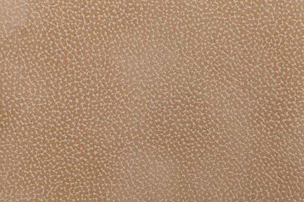 Background of light brown fabric flock, decorated with a coat of the animal. lint-free cloth.