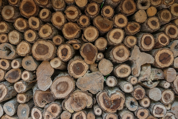 Background of log