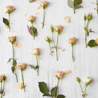 베이지 색 장미와 녹색 잎의 배경