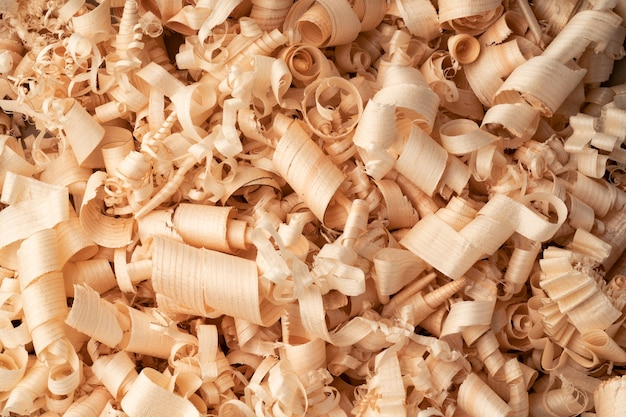 Background of many curled wood shavings close up