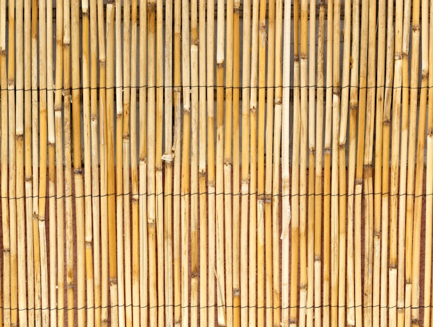 Background of natural cane