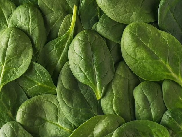 많은 시금치 잎의 배경입니다. 건강을 위한 음식. 채식주의 자 음식.