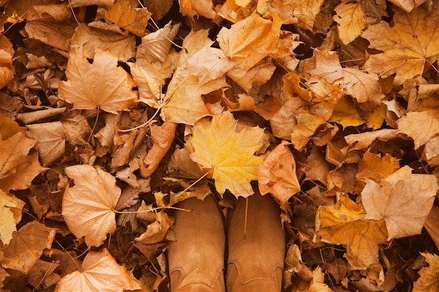가을 노란색과 주황색 마른 잎의 배경은 여성용 스웨이드 신발을 신고 바닥에 누워 있습니다.
