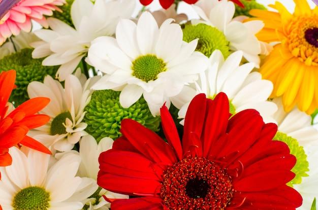 아름 다운 밝은 꽃의 배경을 닫습니다.