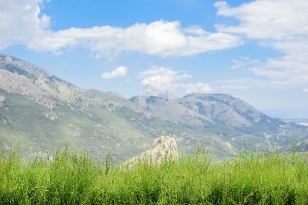 Фон красивых скалистых гор и голубого неба с пышной зеленью на переднем плане.
