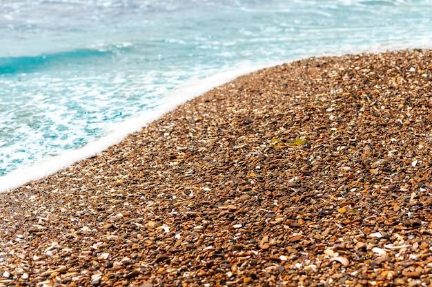 흰 조개의 부분이 있는 갈색 바다 자갈의 배경.