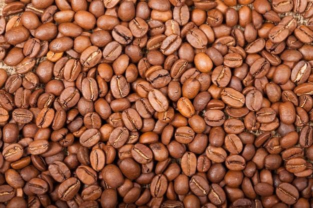 커피 콩의 배경