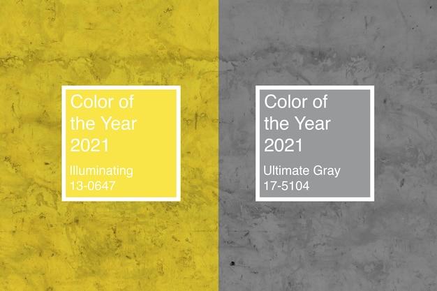 Фон из цветов 2021 года ultimate grey и illuminating
