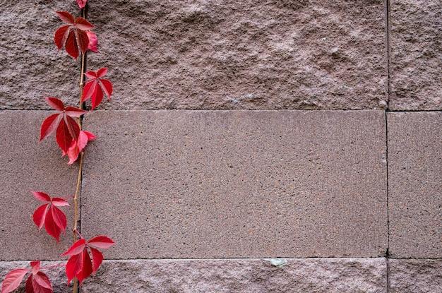飾る砂の石の壁の表面の背景。