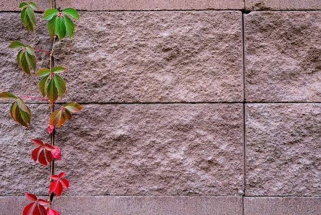 Предпосылка украшения каменной поверхности стены песка.