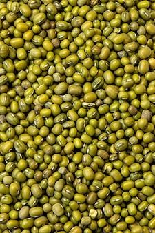 上質な緑のレンズ豆、マメ科植物の背景