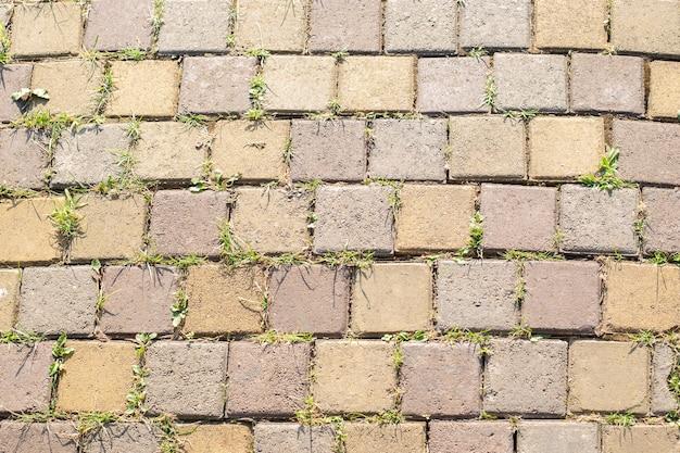 Фон из легкой брусчатки с проросшей травой, ростки жизни сквозь камень