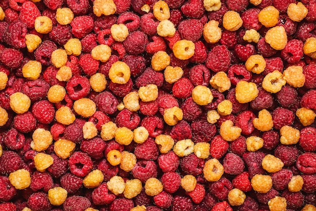 Фон из смешанной желтой и красной малины. вид сверху. органические ягоды.