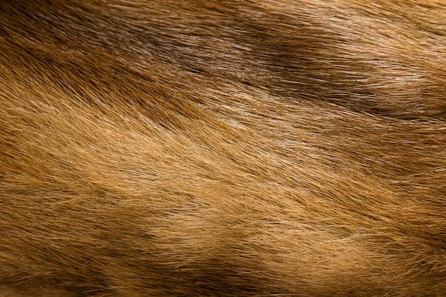 Фон из натуральной шерсти норки