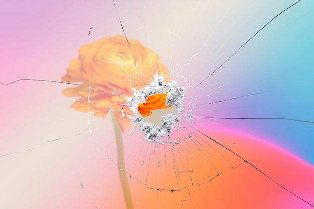 깨진 유리 효과가 있는 오렌지 라넌큘러스 꽃의 배경