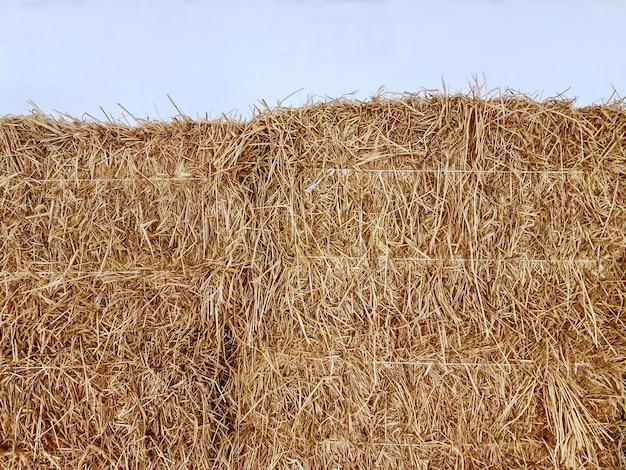白い壁に対する乾いた干し草の山の山の背景