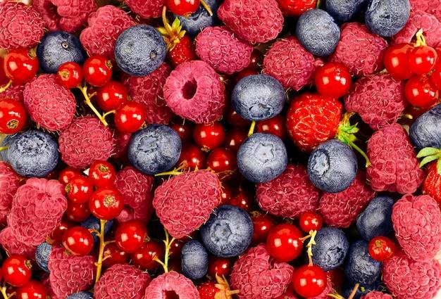 라즈베리, 블루베리, 붉은 건포도, 딸기의 배경이 닫힙니다.