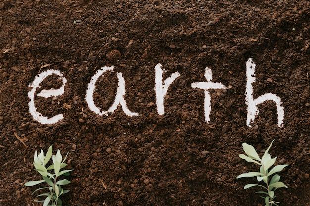 地球という言葉が書かれた土壌と2つの植物の背景