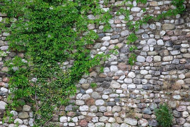 돌 벽 질감의 배경