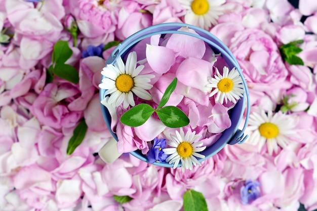 Фон из чайных лепестков роз с цветами ромашки, фиалки и мяты.