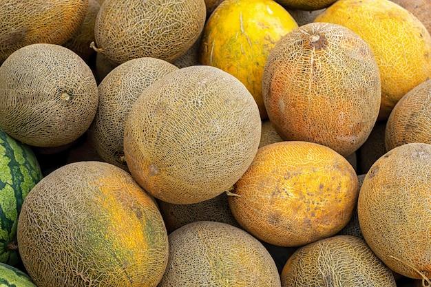 Фон из желтых дынь летний фруктовый узор