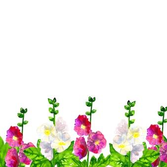 バックグラウンド。葉とピンク紫ゼニアオイ。白アオイ科の植物。手描きの水彩イラスト。孤立。
