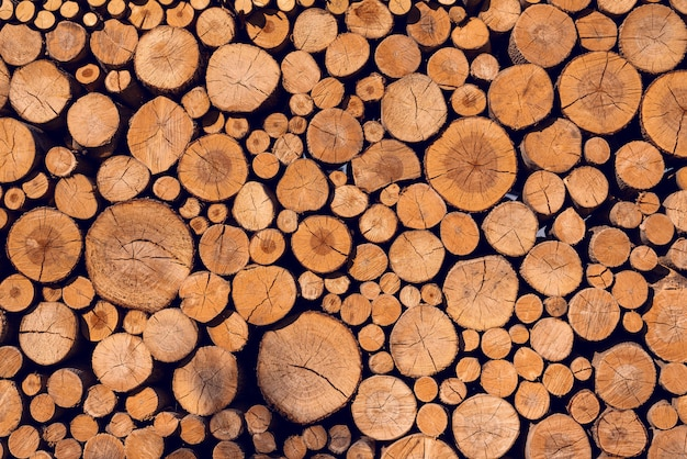 Background of sawn logs of different diameter folded wall